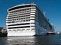 MSC Preziosa, WPAhoi, Kaiser-Wilhelm-Hafen, Hamburg (P1080385).jpg
