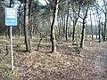 Maashorst, kanonsberg - panoramio (2).jpg