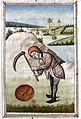 Man digging bolus, late 15th century Wellcome L0015684.jpg