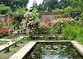 Mannington Hall - The Heritage Rose Garden - geograph.org.uk - 878978.jpg
