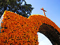 Marigold covered arch, Day of the Dead.jpeg
