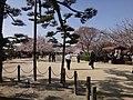 Marunouchi, Matsuyama, Ehime Prefecture 790-0008, Japan - panoramio (55).jpg