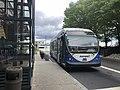Massport 77 shuttle.agr.jpg