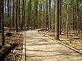 Matthew Henson Trail-17.jpg