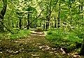 Max-Aschmann Park - panoramio (3).jpg