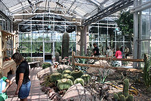 the arid room contains many species of plant life found in desert terrains meijer - Frederik Meijer Garden
