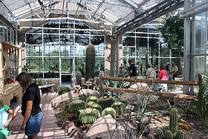 Frederik Meijer Gardens & Sculpture Park - The Arid room contains many species of plant life found in desert terrains.