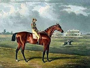 Memnon (horse) - Memnon', the Winner of the Great St. Leger at Doncaster, 1825 by John Frederick Herring, Sr.