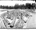 Men working on log boom, ca 1903 (INDOCC 648).jpg