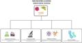 Microorganism identification.png