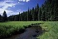 Middle Fork of John Day River-Malheur (23306128634).jpg