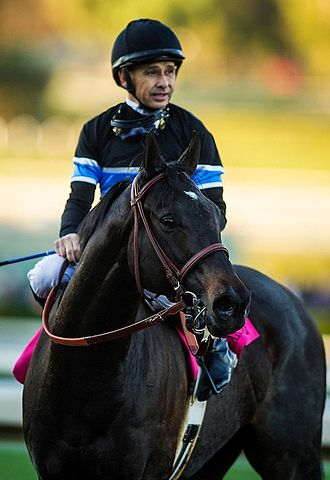 Mike E. Smith - Smith with Shared Belief in 2014