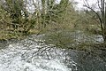 Mill stream at Padworth - geograph.org.uk - 1189276.jpg