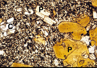 Lamprophyre - Microscope view (long dimension 2 mm) of a thin section of minette from the Colorado Plateau. Magnesium-rich biotite (P, phlogopite) and clinopyroxene (C) phenocrysts in a groundmass of alkali feldspar, pyroxene, and iron-titanium oxides.