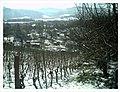 Minus 10 Grad Celsius Glottertal Germany - Magic Rhine Valley Photography - panoramio (9).jpg