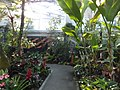 Miracle Planet Museum of Plants in 2013-4-27 No,11.JPG