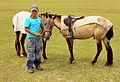 Mongolski chłopiec i konie na stepie podczas lokalnego festiwalu Naadam (01).jpg