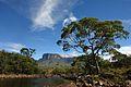 Monte Roraima, Roraima 2.JPG