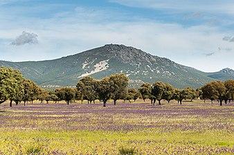Montes de Toledo - Retuerta del Bullaque2.jpg