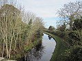 Montgomery Canal north of B4390 - geograph.org.uk - 1565158.jpg
