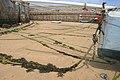 Mooring Ropes on Town Beach - geograph.org.uk - 817580.jpg