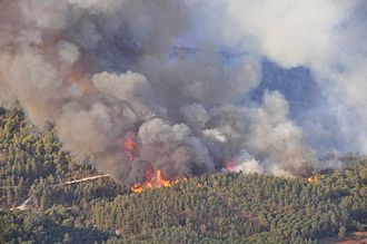 Mount Carmel forest fire (2010) - Image: Mount Carmel forest fire 14