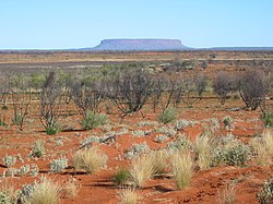View across sand plains and salt pans to Mount Conner, Central Australia