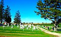 Mount Pleasant Cemetery - panoramio (1).jpg