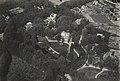 NIMH - 2155 001068 - Aerial photograph of Baarn, The Netherlands.jpg