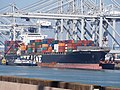 NYK Daedalus (ship, 2007) IMO 9337614, Amazonehaven, Port of Rotterdam pic2.JPG