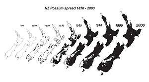 Common brushtail possum in New Zealand - Image: NZ possum spread 1870 1990
