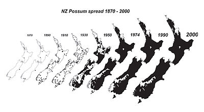 NZ possum spread 1870 - 1990.jpg