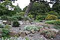 National Botanic Garden,Dublin,Ireland - panoramio (39).jpg