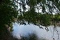 Naturschutzgebiet Haseder Busch - Innerste (10).jpg