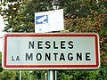 Nesles-la-Montagne-FR-02-panneau d'agglomération-03.jpg