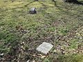 New Nonconnah MB Church Cemetery Memphis TN 007.jpg
