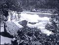 Niagara Glen and rapids (I0001608).tif