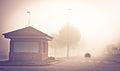 Niebla (6843453930).jpg