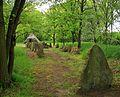 Niedersachsen, Haaßel, Naturdenkmal ND UE 00078 03.jpg