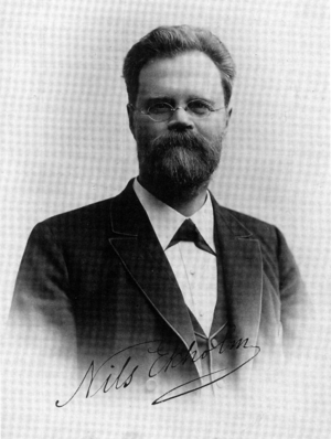 Nils Gustaf Ekholm - Nils Gustaf Ekholm in the 1890s, at the time of the S. A. Andrée expedition.
