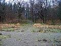 Odbahňování hostivařské nádrže (39), cesta do lesoparku.jpg