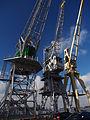 Old port cranes at Port of Antwerp, pic-005.JPG