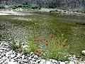 Olimpos - panoramio (26).jpg