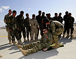 Operation Slipper Afghanistan DVIDS574117.jpg