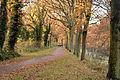 Oranjekanaal (8213987747).jpg
