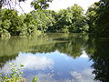 Orchardleigh Lake3.JPG