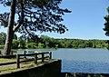 Osbornes Pond, Shipley Park (geograph 5469049).jpg