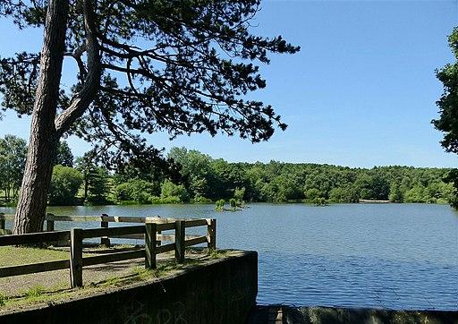 Osbornes Pond, Shipley Park (geograph 5469049)
