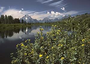 Oxbow Bend outlook in the Grand Teton National...