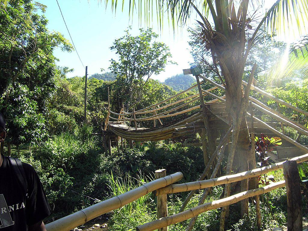 Mayfield Falls Westmoreland Jamaica